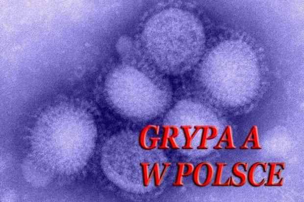 GIS: 1158 potwierdzonych przypadków A/H1N1