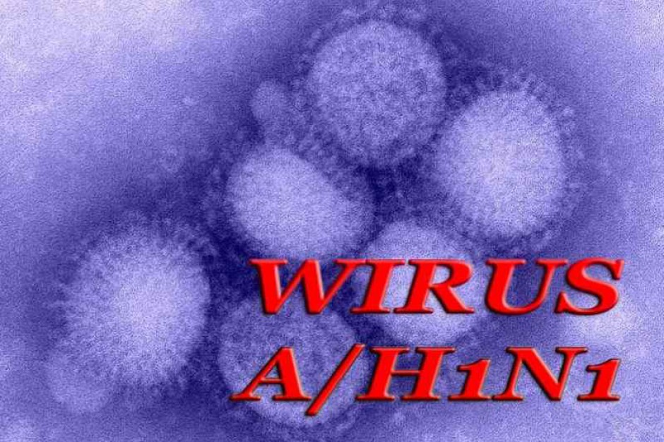 Pomorze: chcą pieniędzy na walkę z grypą