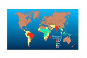 Zidentyfikowano geny odpowiadające za zachorowania na trąd