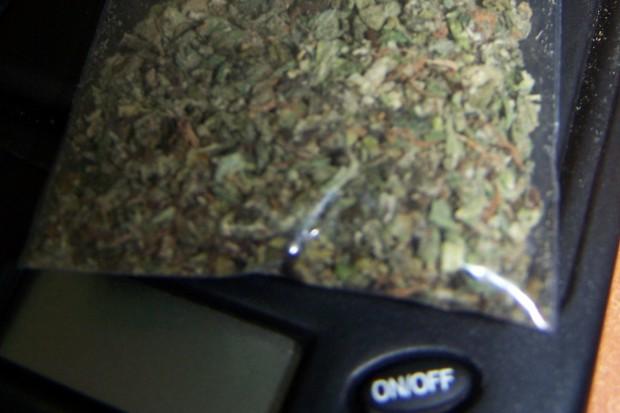 Marihuana ziołem leczniczym w chorobach jelit?