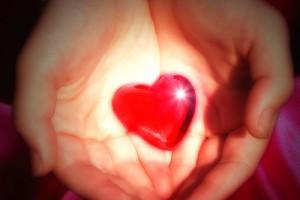 Donacje narządów: brakuje identyfikowanych dawców