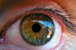 Podlaskie: jedna czwarta dzieci ma wady wzroku