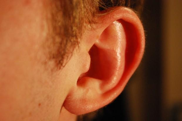 Kajetany: powstanie Światowe Centrum Leczenia Częściowej Głuchoty