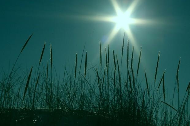 Światło słoneczne obniża ryzyko raka nerki u mężczyzn