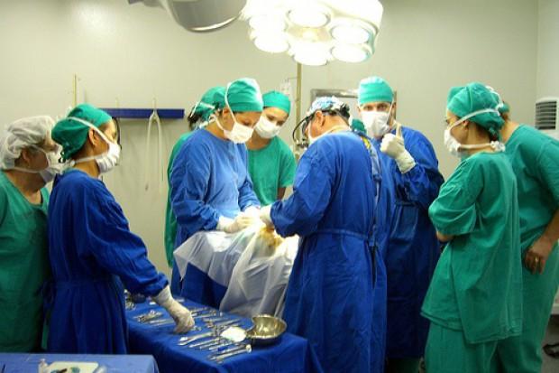 Koordynator ds. przeszczepów: w Polsce wolontariusz, w Hiszpanii menedżer...