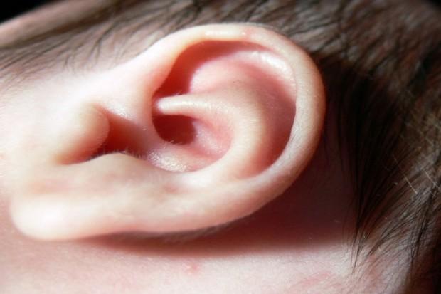 Opole: pierwsze wszczepienia implantów słuchowych