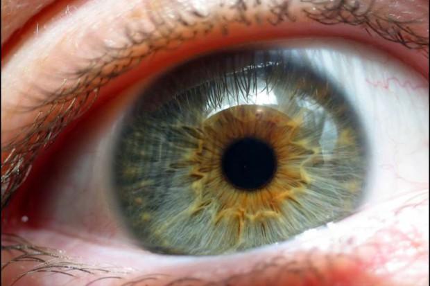 Australia: bioniczne oko przywróci widzenie