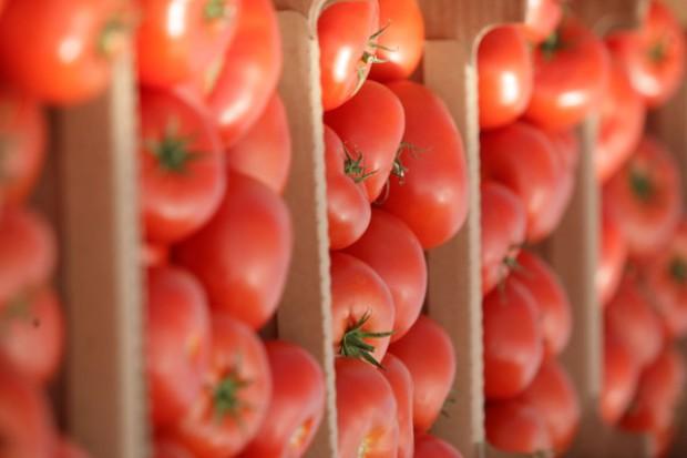 Fundacja Rozwoju Kardiochirurgii: projekt Siła Serca z pomidorem w roli głównej