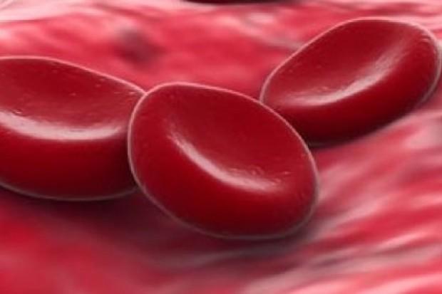 Małopolska: i tam mają już swój autobus do poboru krwi