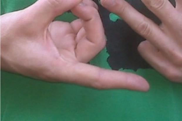 Język migowy w ZOZ-ach