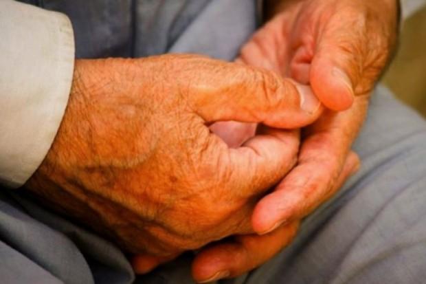 Witamina B opóźnia rozwój choroby Alzheimera?