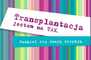 Tak się buduje przyszłość transplantologii