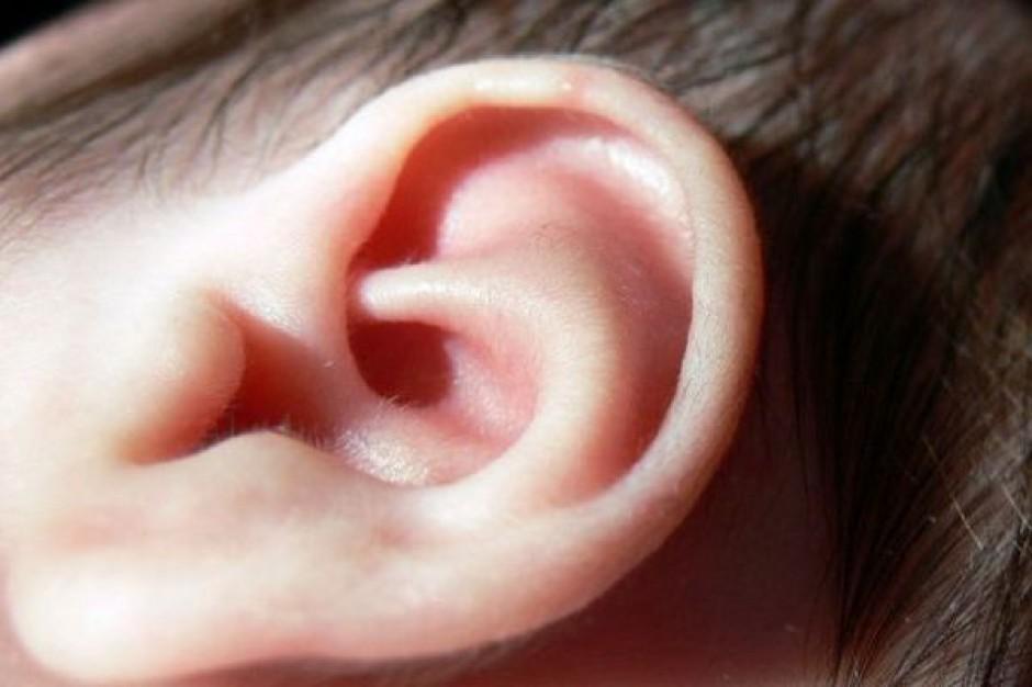 Tuchola: podsłuch w biurze posła-lekarza