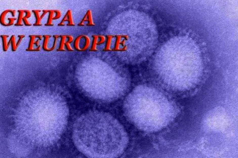 Wlk. Brytania: świńska grypa znów atakuje