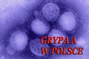 Wirus grypy A/H1N1: kolejna zakażona osoba w stanie ciężkim
