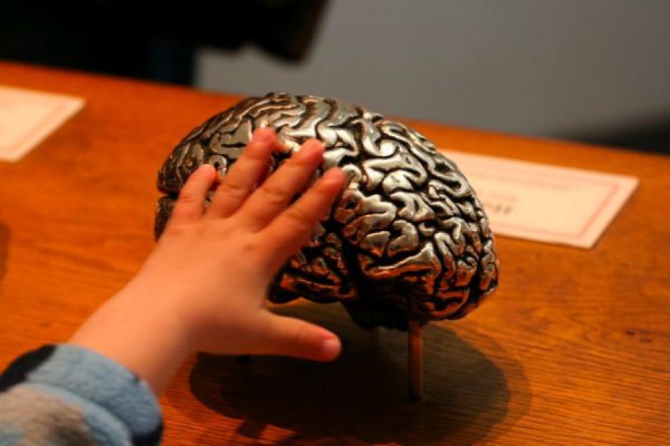 Autor znakomitych atlasów mózgu po raz kolejny w Polsce