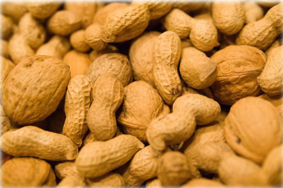 Gen alergii na orzeszki ziemne