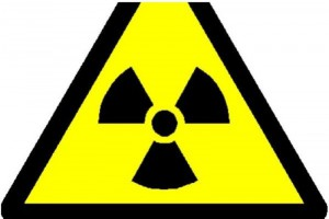 Greenpeace: żywność z okolic Czarnobyla wciąż napromieniowana