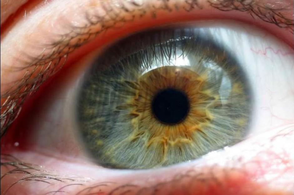 Łódzkie: zbadają wzrok u dzieci