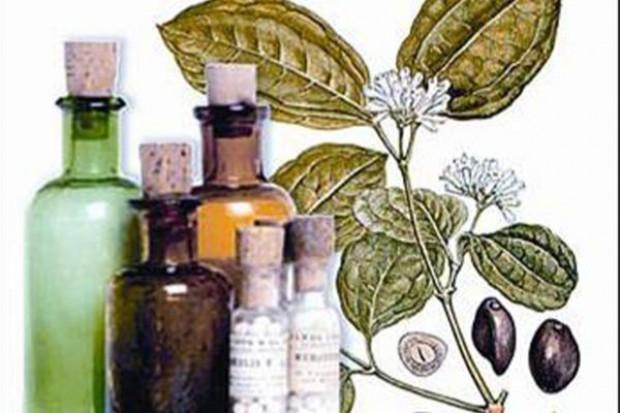 KE: od 1 maja na unijnym rynku tylko zarejestrowane leki ziołowe
