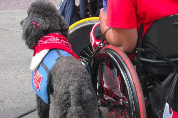 Gdańsk: powstaje Karta Osób Niepełnosprawnych