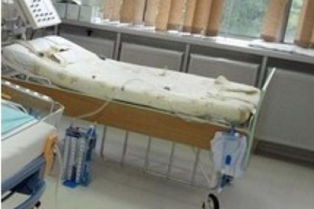 Szwecja: pierwsza ofiara śmiertelna Escherichia coli poza graniami Niemiec