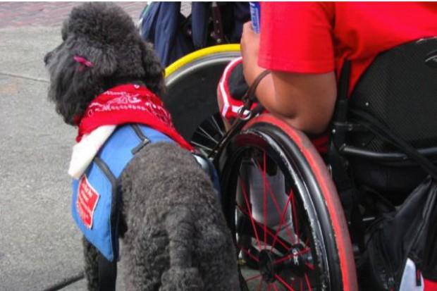 Rodzice niepełnosprawnych dzieci protestowali przed kancelarią premiera