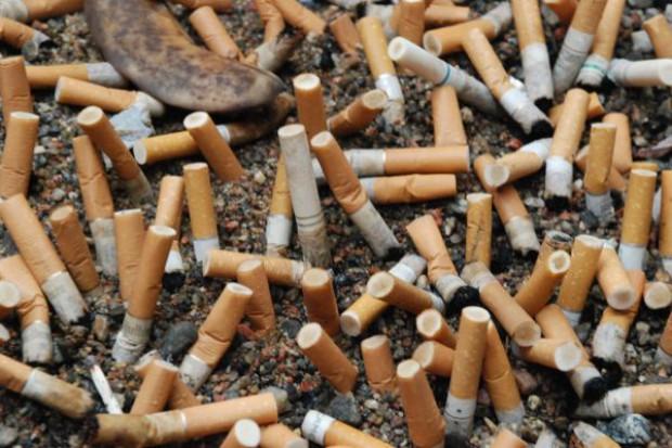 MZ: makabryczne etykiety na papierosach mają odstraszyć palaczy