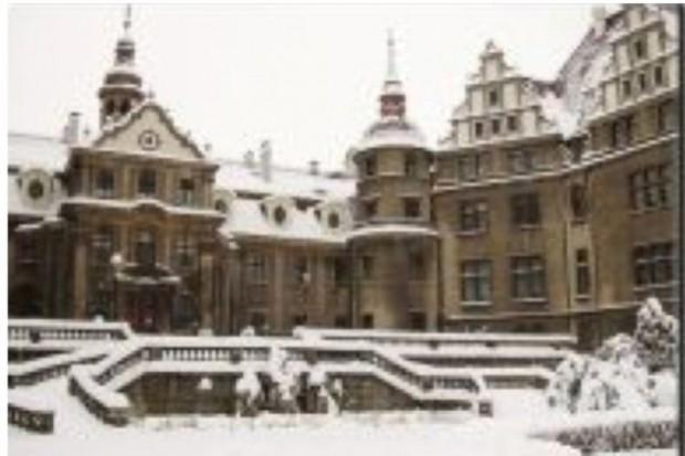 Prof. Jarema: budowa dużego pawilonu w Mosznej nieuzasadniona