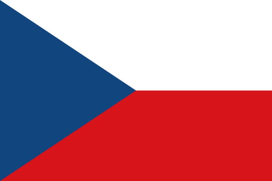 Czechy: marihuana w celach leczniczych będzie legalna
