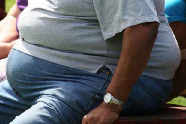 Otyłość i cukrzyca: ryzyko zaczyna się już w łonie matki
