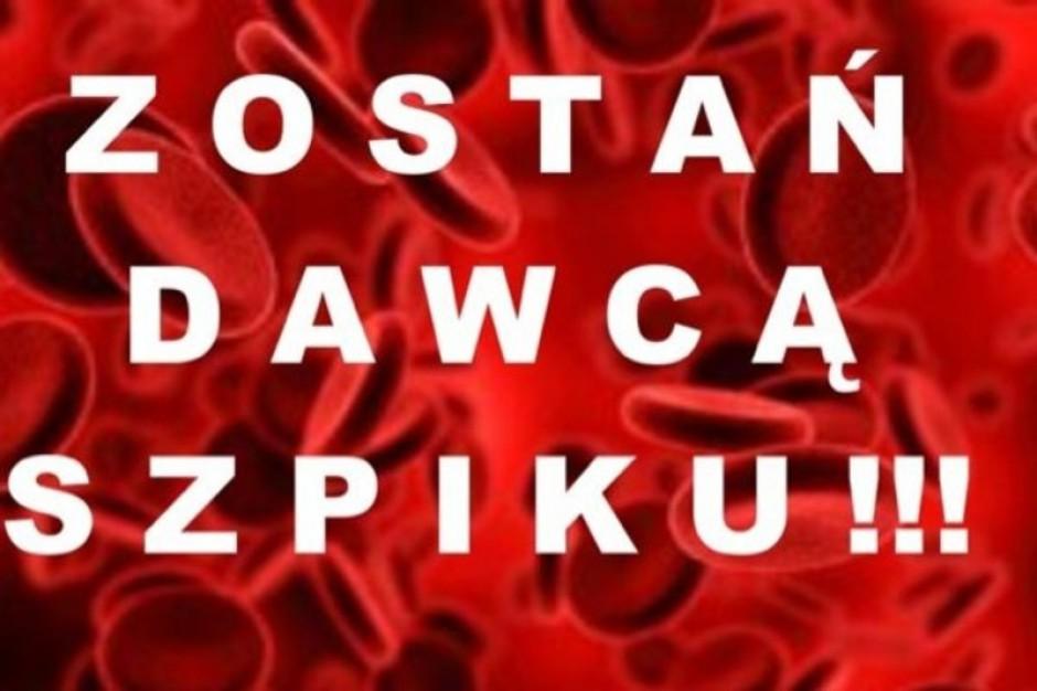 Poznań: dzień dawcy szpiku w Szpitalu im. Jonschera