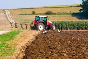KRUS: więcej niż 15 ha = składka zdrowotna w wysokości 36 zł