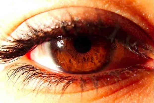 Naukowcy: siatkówka oka odzwierciedla stan mózgu