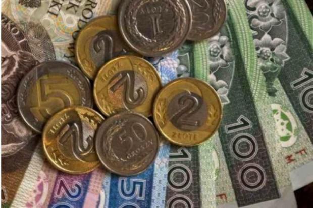 Pelion: blisko 6,6 mld zł przychodów w 2011 roku