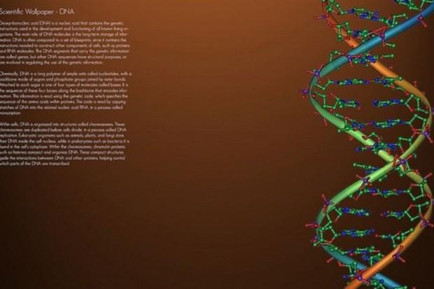 USA: nowa metoda zapisu danych dotyczących ludzkiego genomu