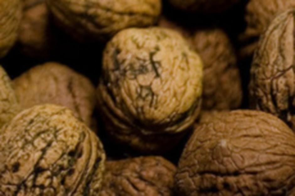 Jedzenie orzechów w ciąży może obniżać ryzyko alergii u dziecka