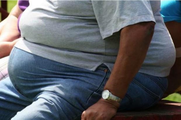Rośnie liczba otyłych Polaków