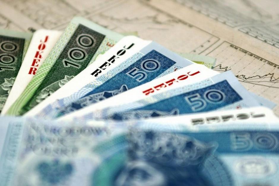 MZ: plan finansowy Funduszu na 2013 rok