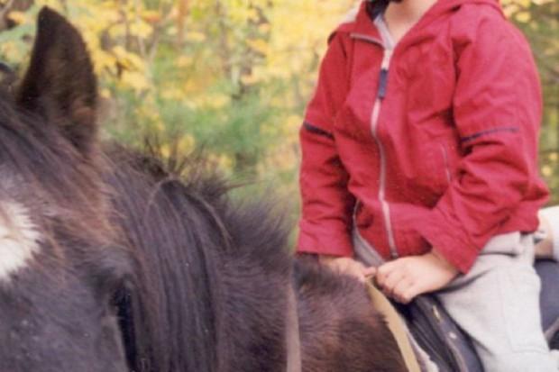 Sosnowiec: konie do zajęć z hipoterapii w szkole specjalnej