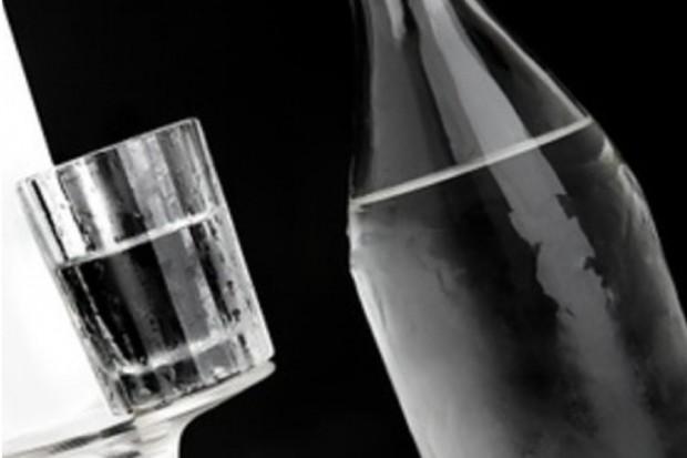 GIS: wstrzymanie sprzedaży alkoholi z Czech - poza winem i piwem