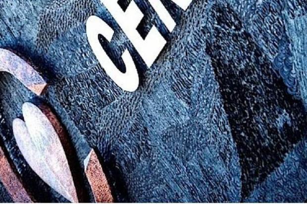 Wicedyrektor CZD: dług jest ogromny, ale jest szansa na jego spłacanie