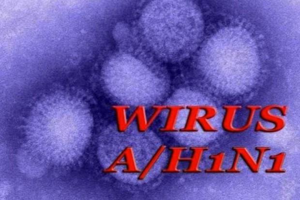 U 15 pacjentów szpitali na Podbeskidziu stwierdzono wirus A/H1N1