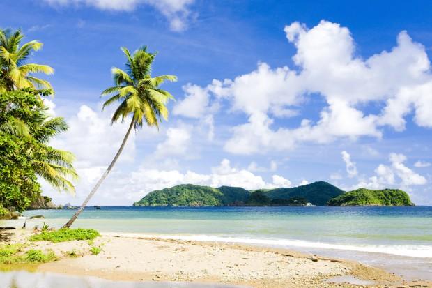 Przykre pamiątki z tropików