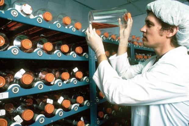 Polpharma wchodzi w biotechnologiczny biznes