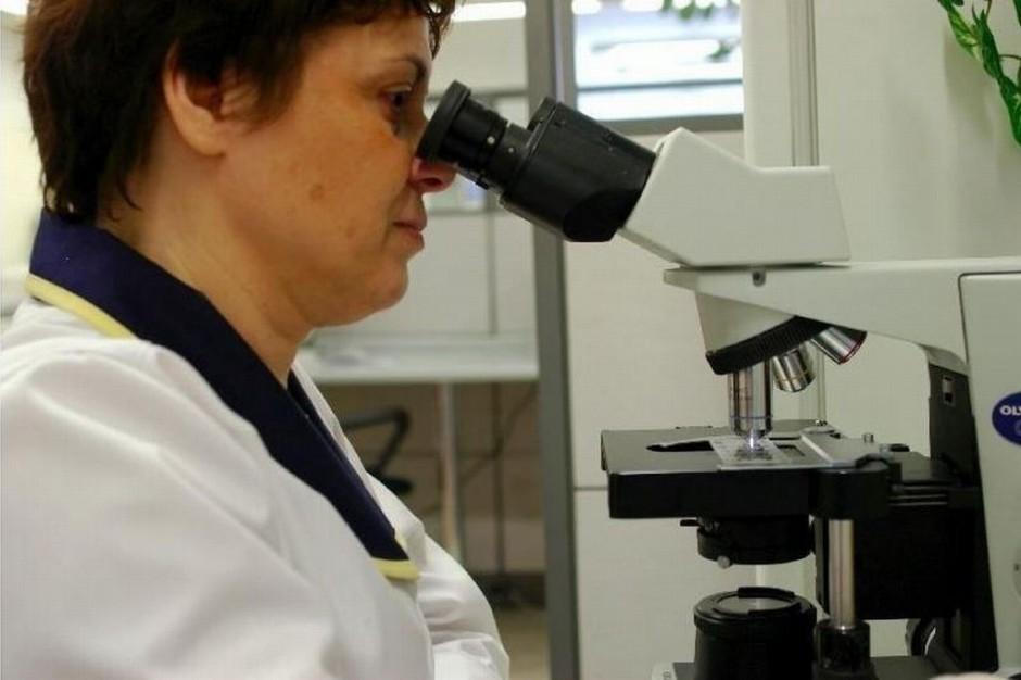 Lubuskie: choroby zawodowe w 2012 roku