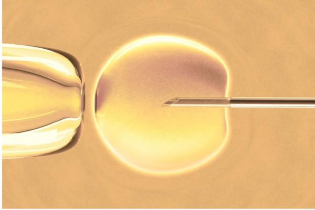 MZ: program in vitro dla 15 tys. par, ponieważ taka jest skala potrzeb