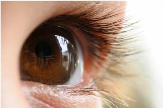 Ekspert: dzieci poniżej 4 roku życia nie powinny oglądać filmów w 3D