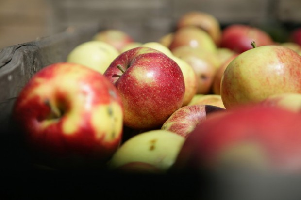 Dieta uboga w warzywa i owoce = krótsze życie?