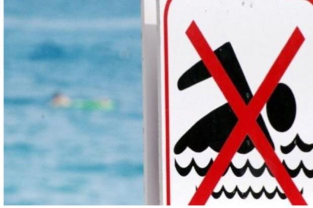 Olsztyn: sinice w wodzie, jest zakaz kąpieli